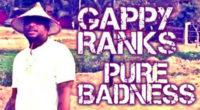 Gappy_Banner